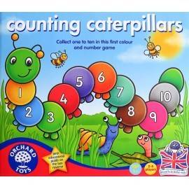 OMIZI / COUNTING CATERPILLARS