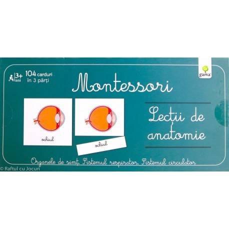 LECȚII DE ANATOMIE - MONTESSORI