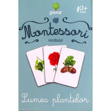 LUMEA PLANTELOR - VOCABULAR MONTESSORI