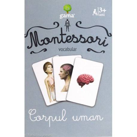 CORPUL UMAN - VOCABULAR MONTESSORI