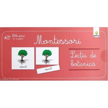 LECȚII DE BOTANICĂ - MONTESSORI